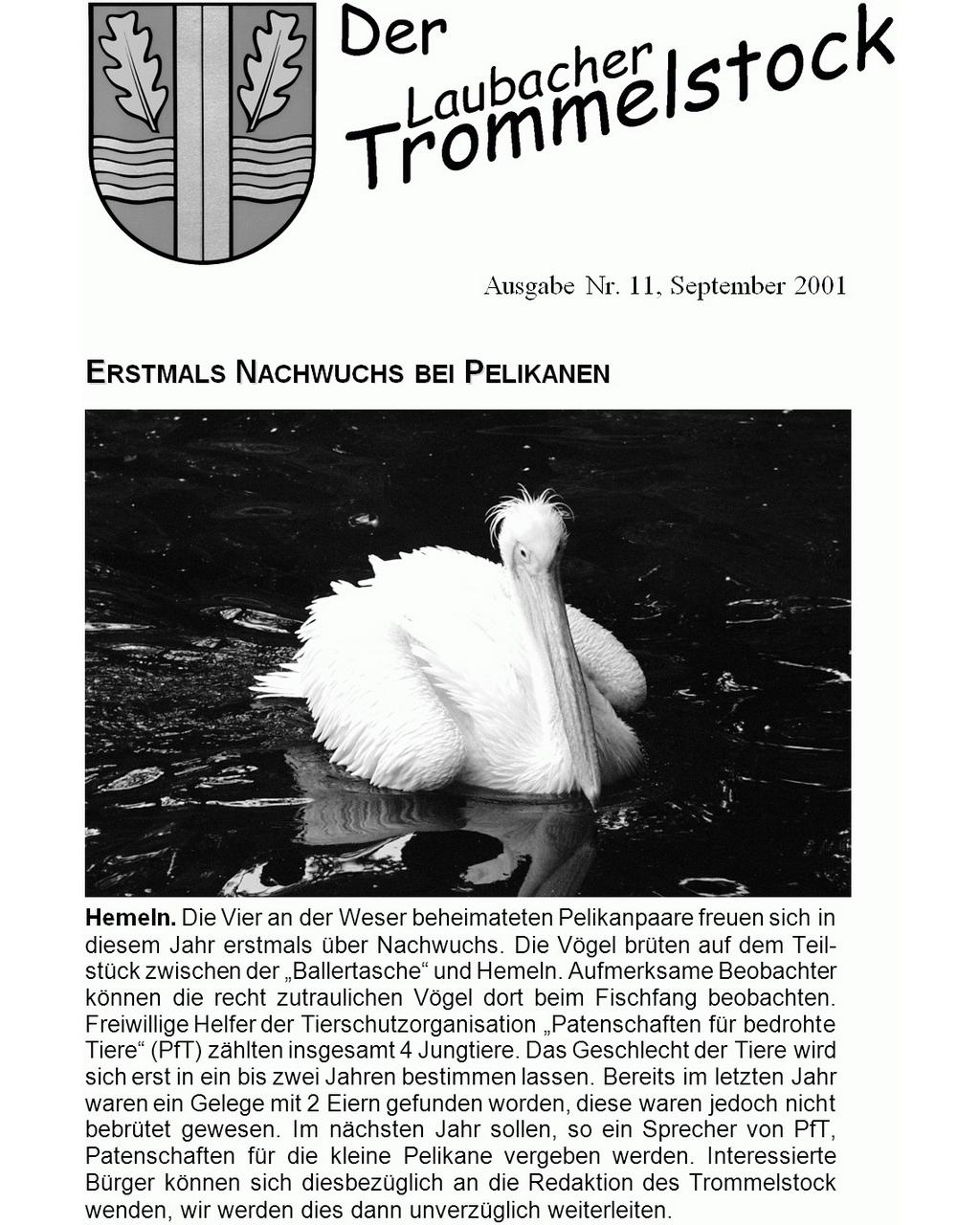 Laubacher-Trommelstock-Titelseite-011